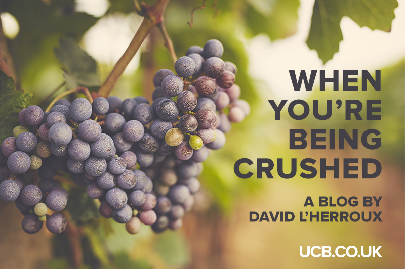 DLH-Blog-WhenYou'reBeingCrushed